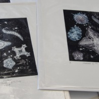 Jane Furst - Treasures of the Deep, drypoint and etching