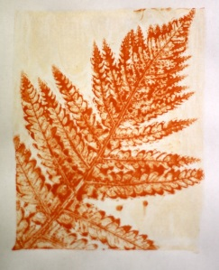 Gelli print made using a fern