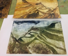 MFP-Collagraph